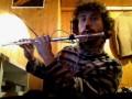 L' accordatura negli strumenti a fiato - Il flauto traverso
